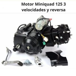 MOTOR REBEL MASTER MINIQUAD 125 cc 3 VELOCIDADES Y REVERSA